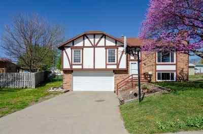 Single Family Home For Sale: 1508 Shamrock Street