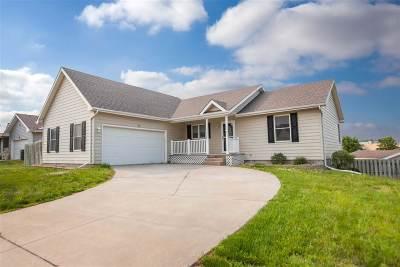 St. George Single Family Home For Sale: 100 Lockett Lane