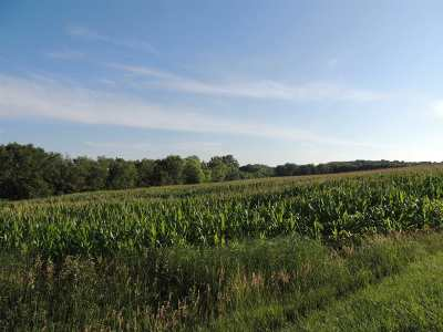 Clay County Farm For Sale: 24th Road