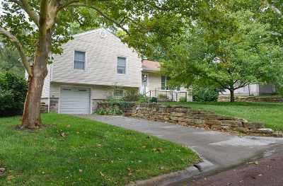 Alma Single Family Home For Sale: 911 Lyndon Avenue