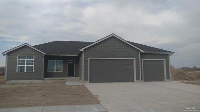 Salina Single Family Home For Sale: 1607 Murray Lane