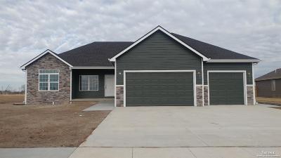 Salina Single Family Home For Sale: 1209 Shoreline Drive