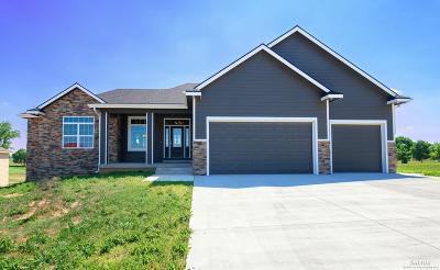 Salina KS Single Family Home For Sale: $400,000