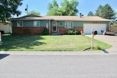 Salina Single Family Home For Sale: 1224 Louise Lane