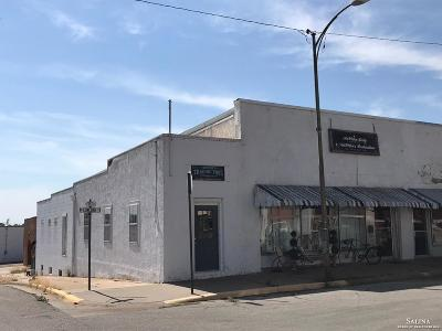 Minneapolis KS Commercial For Sale: $55,000