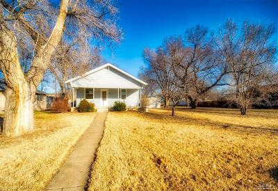 Salina Single Family Home For Sale: 1010 North 4th Street