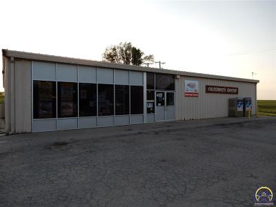 Commercial For Sale: 403 K-214 Hwy