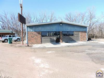 Commercial For Sale: 1412 K-4 Hwy