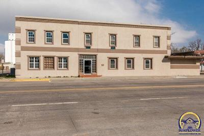 Commercial For Sale: 102 S Main St