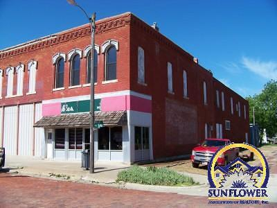 Madison Commercial For Sale: 127 N 3rd Ave