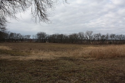 Residential Lots & Land For Sale: 30857 133rd Rd