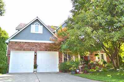 Andover Single Family Home For Sale: 1117 W Terradyne Pl
