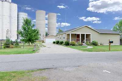 Valley Center Single Family Home For Sale: 136 S Birch