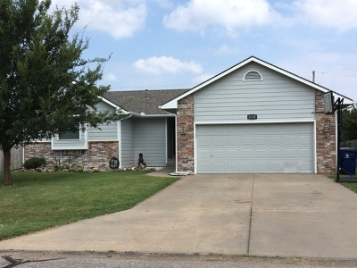 Belle Plaine Single Family Home For Sale: 1132 N Burrows St
