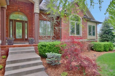 Andover Single Family Home For Sale: 833 E Woodstone St