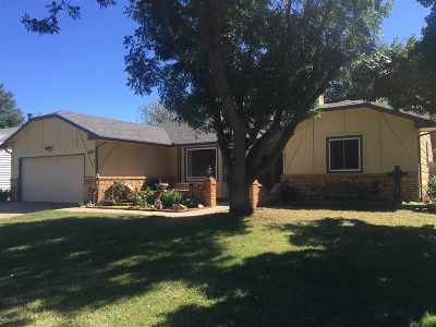Wichita Single Family Home For Sale: 11511 W Birch St