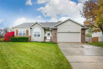 Andover Single Family Home For Sale: 313 W Concord