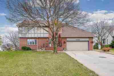 Wichita Single Family Home For Sale: 110 S Ashley Park