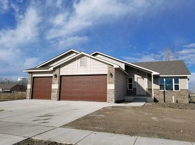 Wellington Single Family Home For Sale: 814 N Homestead Dr