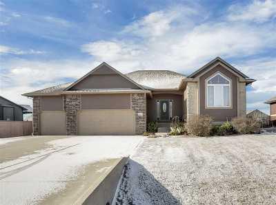 Park City Single Family Home For Sale: 1617 E Fallbrook St