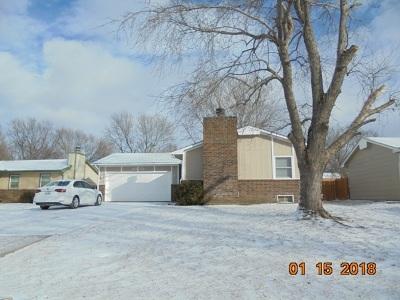 Park City Single Family Home For Sale: 6378 N Scottsville