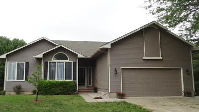 Harvey County Single Family Home For Sale: 934 Lazy Creek Drive