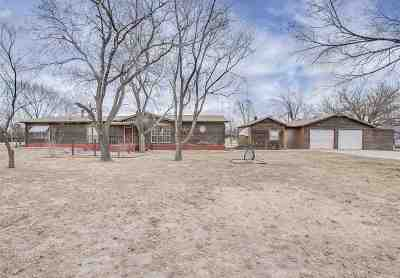 Augusta Single Family Home For Sale: 9734 SW Purity Springs Rd
