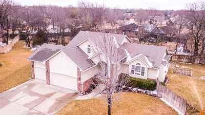Andover Single Family Home For Sale: 520 W Douglas
