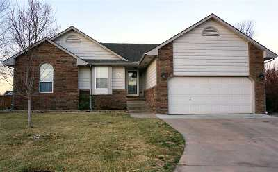 Clearwater Single Family Home For Sale: 808 E Park Glen Ct