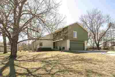 Andover Single Family Home For Sale: 133 E Hamlin Rd