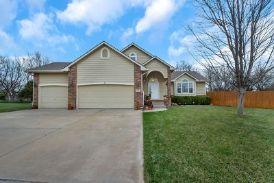 Andover KS Single Family Home For Sale: $245,000