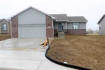 Sedgwick County Single Family Home For Sale: 1803 S Lynnrae St