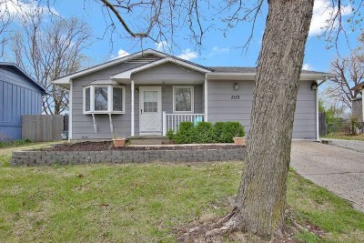 Newton Single Family Home For Sale: 209 Grandview Ave