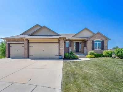 Wichita Single Family Home For Sale: 2410 N Graystone Ct