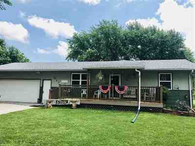 Galva Single Family Home For Sale: 313 S Empire St