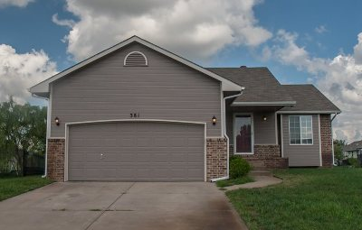 Haysville Single Family Home For Sale: 381 E Riley Ave.