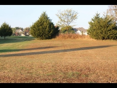 Winfield Residential Lots & Land For Sale: 3013 Yaeger Dr