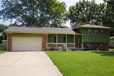 Clearwater Single Family Home For Sale: 350 S 2nd St