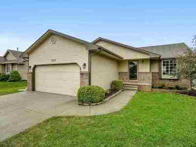Clearwater Single Family Home For Sale: 1227 Red River Dr