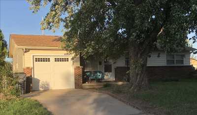 Wichita Single Family Home For Sale: 1252 W Rita St