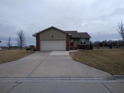 Hesston Single Family Home For Sale: 513 Clover Ln