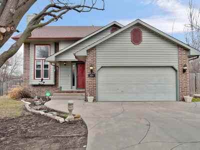Andover KS Single Family Home For Sale: $215,000