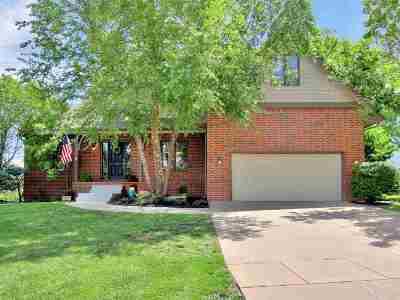 Andover Single Family Home For Sale: 852 Bramerton St