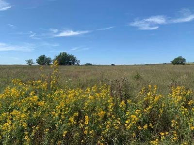 El Dorado Residential Lots & Land For Sale: NE Wildlife Ln