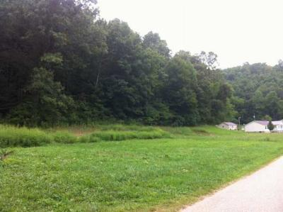 Carter County Residential Lots & Land For Sale: McGlone Creek