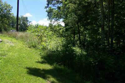 Carter County Residential Lots & Land Active-Back On Market: Rt. 182
