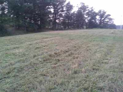 Greenup County Residential Lots & Land Active-Back On Market: Jaybird Lane