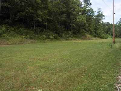 Carter County Residential Lots & Land For Sale: Sunny Brook Subdivision, Lot 10