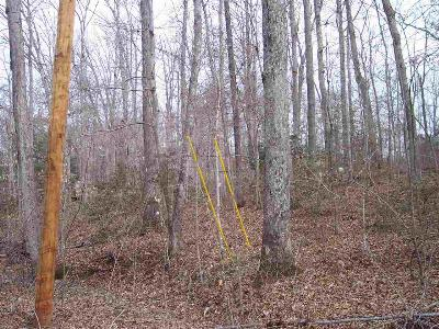 Carter County Residential Lots & Land Active-Back On Market: Horton Acres, Lot 67