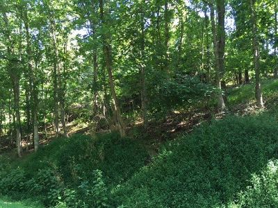 Catlettsburg Residential Lots & Land For Sale: 3 Atlanta Drive